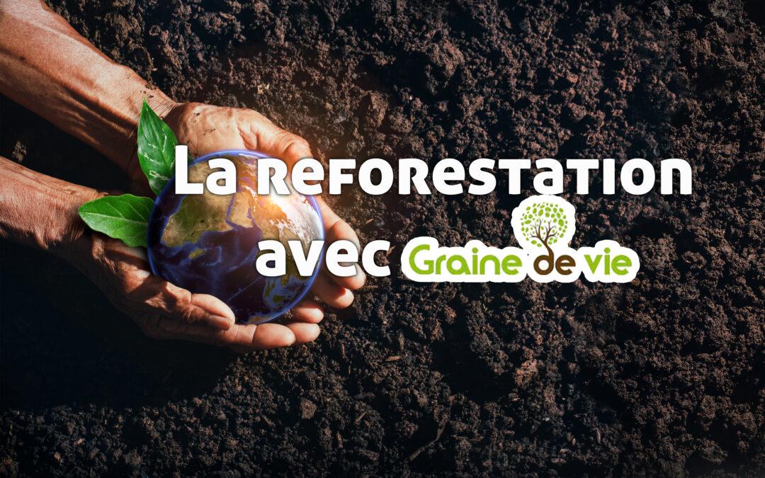 Reforestation avec Graine de Vie